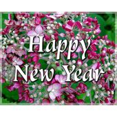 Gift Card: Happy New Year