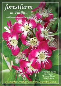 Forestfarm Catalog Spring 2017 Thumbnail