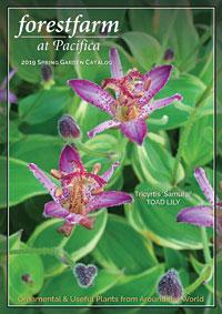Forestfarm Catalog Spring 2019 Thumbnail